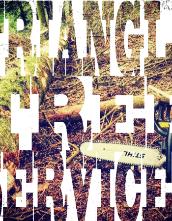 Triangle Tree Services